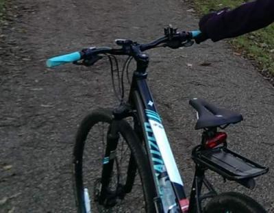 Stolen Specialized Ariel Sport Disc Step Thru 2014 Women S Hybrid