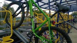 Marin Bikes MADRONE