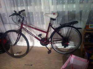 Murray upright – ladies bike