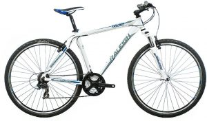 Raleigh Misceo 1.0
