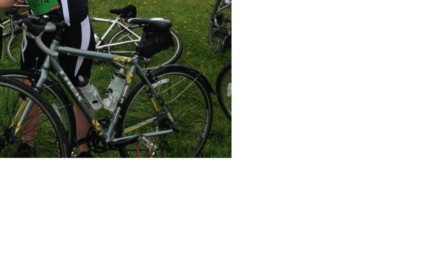 Stolen Trek Lexa C 2013 Women's Road Bike
