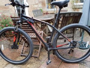 Specialized ROCKHOPPER 29r