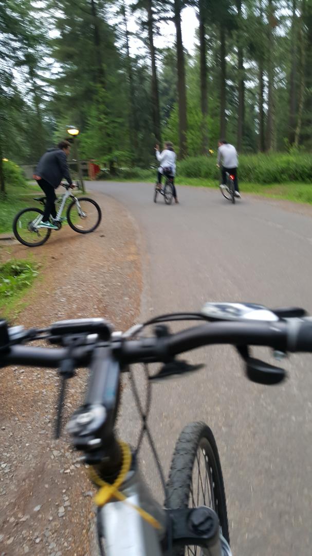 Stolen Carrera Bicycle Crossfire 2