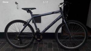 Carerra 7005 T6