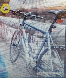 Carrera bicyc Gryphon