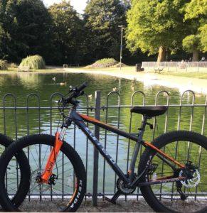 Carrera bicycles Vendetta