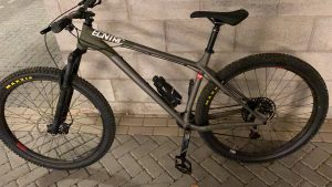 NS Bikes Eccentric Alu 29